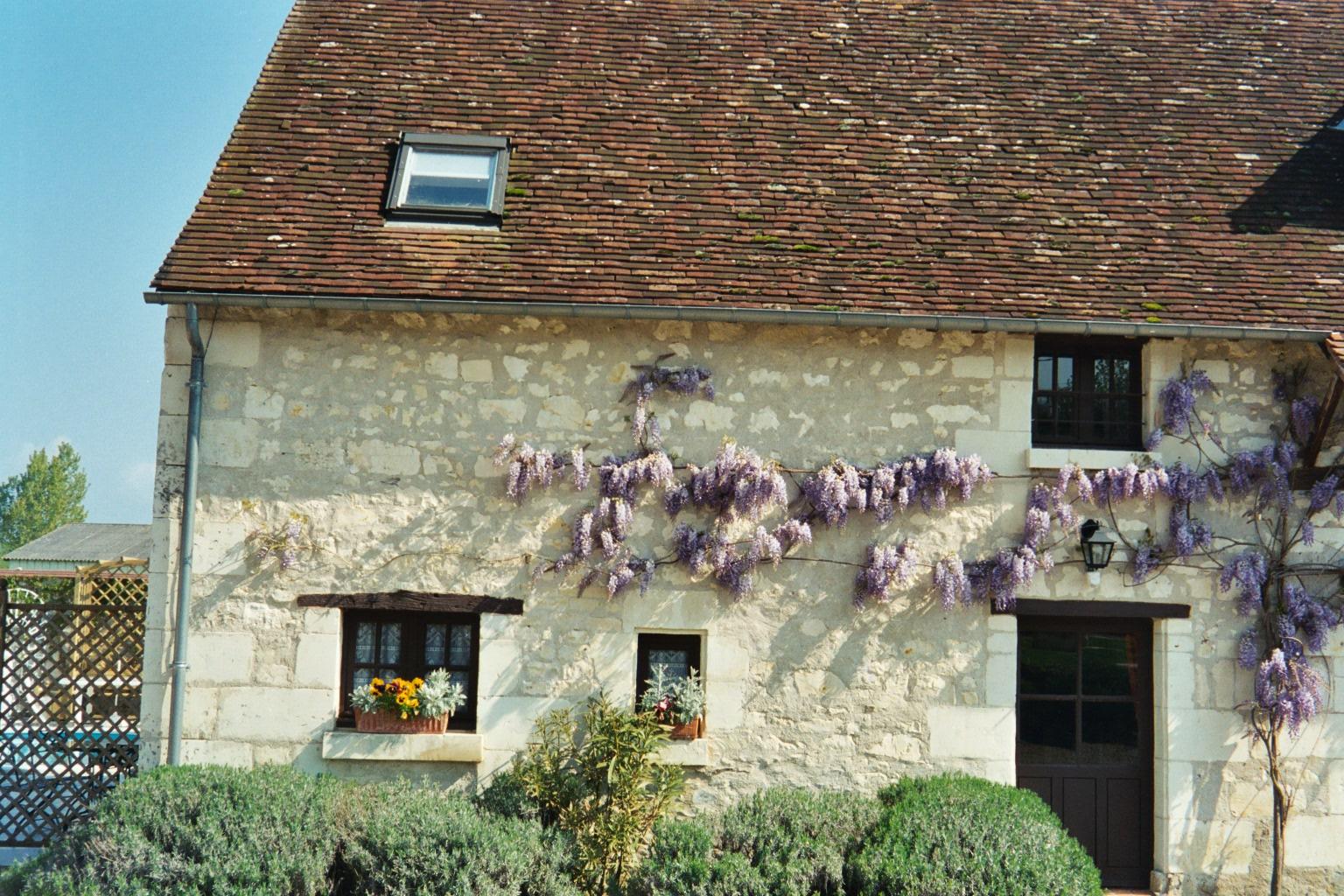 Cottage 1 photo